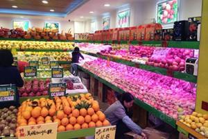 新陶北街の果物屋