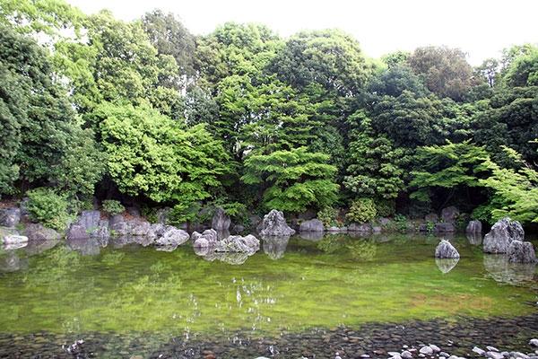 日本庭園内の池